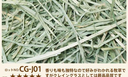 クレイングラス ロットNO.CG-J01