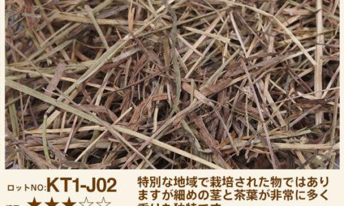 KT1-J01