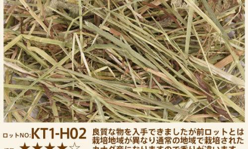 KT1-H02