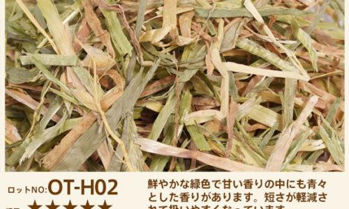 OT-H02
