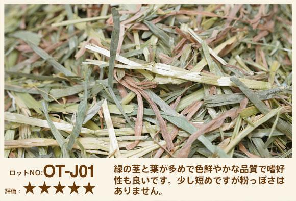 スーパープレミアムオーツヘイ ロットNO.OT-J01