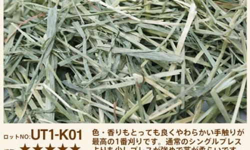 UT1-K01