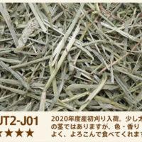 UT2-J01