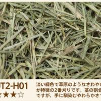UT2-H01