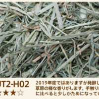 UT2-H02