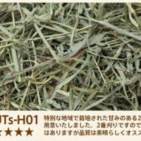 UTs-H01