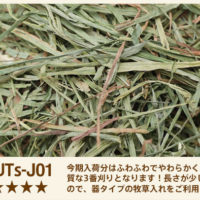 UTs-J01