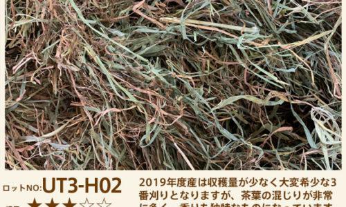 UT3-H02