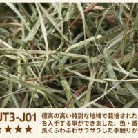 UT3-J01
