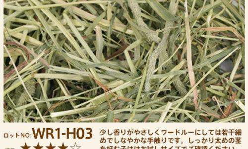 wr1-H03