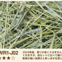WR1-J02