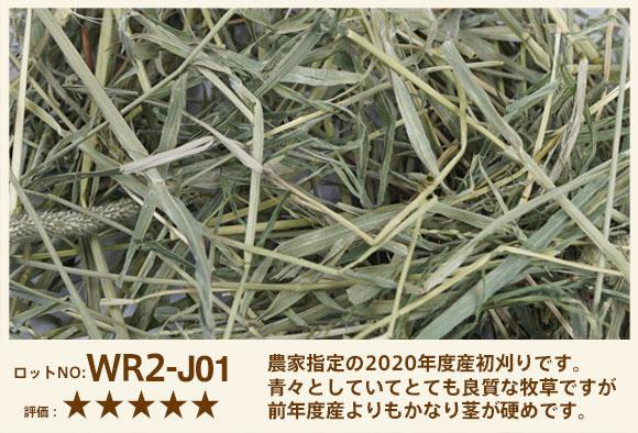 WR2-J01
