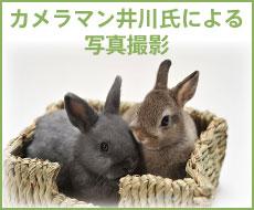 井川氏により写真撮影