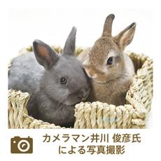 カメラマン井川氏の写真撮影