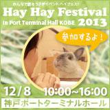 HayHayFestival