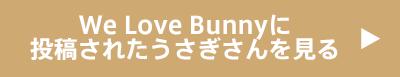 We Love Bunnyに 投稿されたうさぎさんを見る