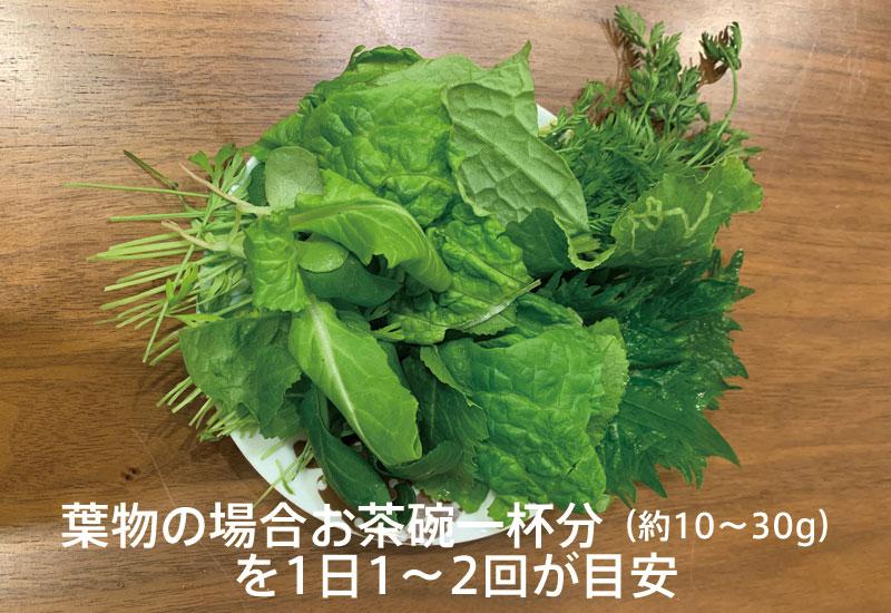 うさぎの野菜の目安